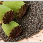 Black Poppy seed
