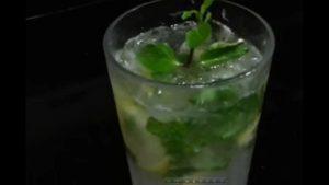 Mint juice recipes