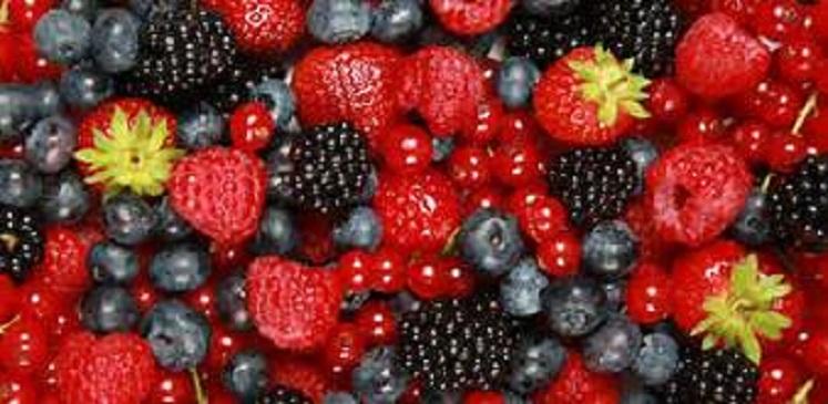 Diabetes friendly fruits
