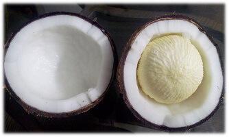 Fresh coconut recipes